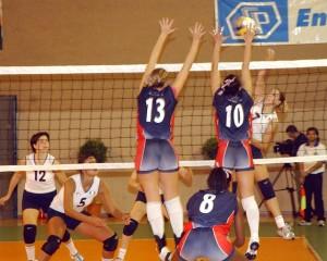 Voleibol Deportes