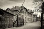 Auschwitz: La muestra para conocer el horror nazi se expone en Madrid