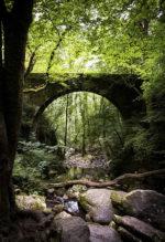 Galicia y su gran oferta de turismo y cultura en Navidad