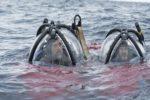 Vídeo: Javier Bardem desciende el Antártico para pedir su protección