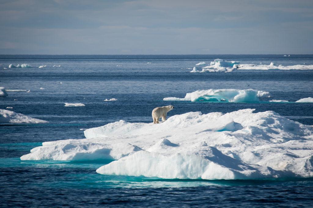 deshielo antártico