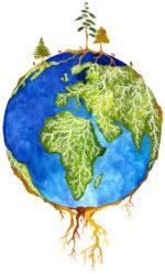 La simbiosis entre árboles y hongos es clave para la evolución del clima
